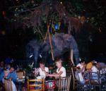 rainforest_cafe_1998