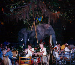 rainforest_cafe_1998