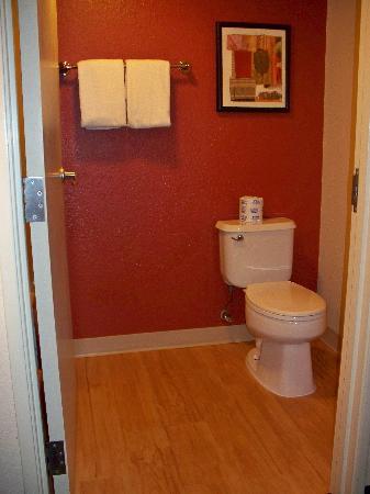 toilet-area