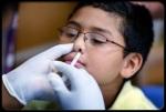 swine-flu-h1n1-vaccicne-s8-nasal-flu-spray-vaccine